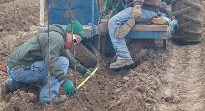 johnsons nursery employment jackson farm crew green industry jobs