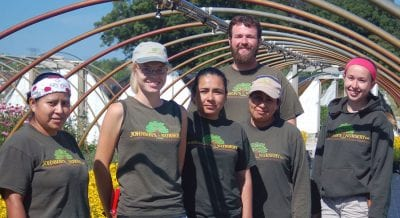 johnsons nursery employment propagation laborer green industry jobs
