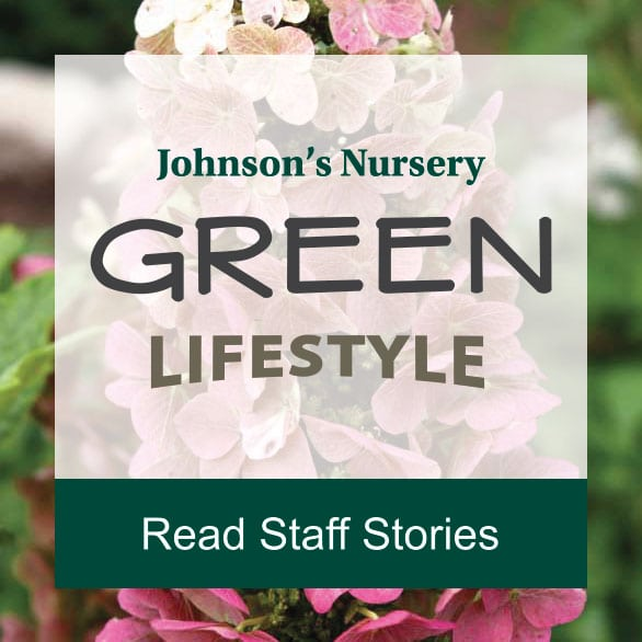 johnsons nursery employment stories ad