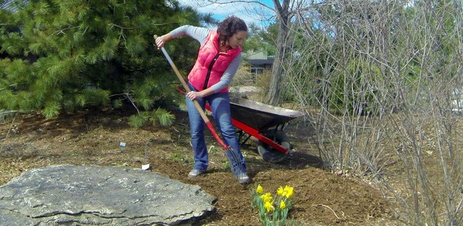 johnson's nursery bark mulch protect plants milwaukee buy bark mulch