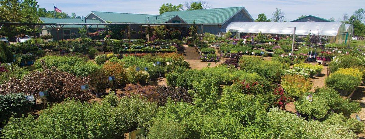johnson's gardens in cedarburg garden center