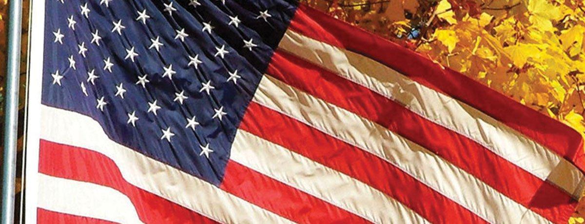 save on plants at johnson's nursery in menomonee falls american flag