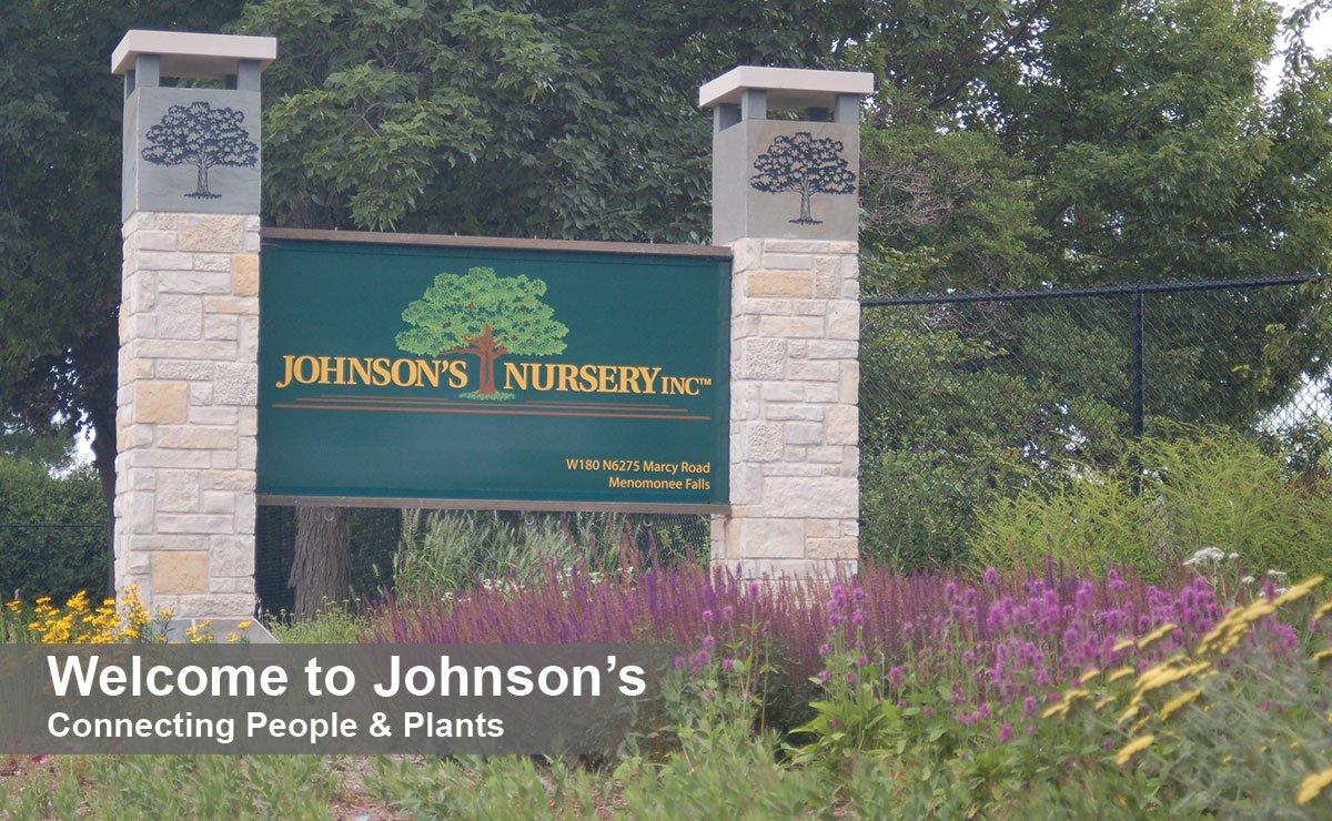 johnson's nursery plant grower find landscape plants near me milwaukee menomonee falls wisconsin